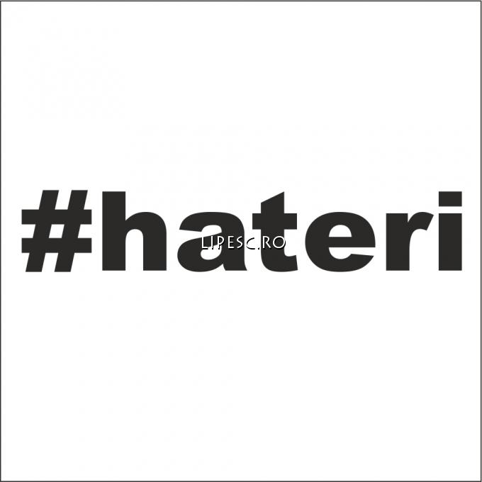 Stickere hateri