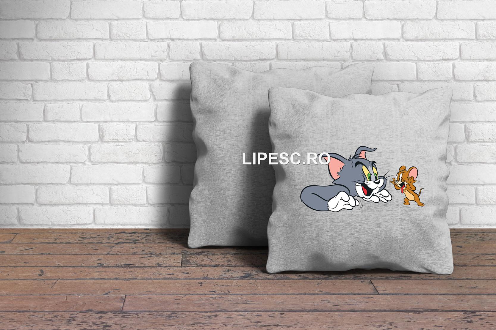 Perna Tom si Jerry