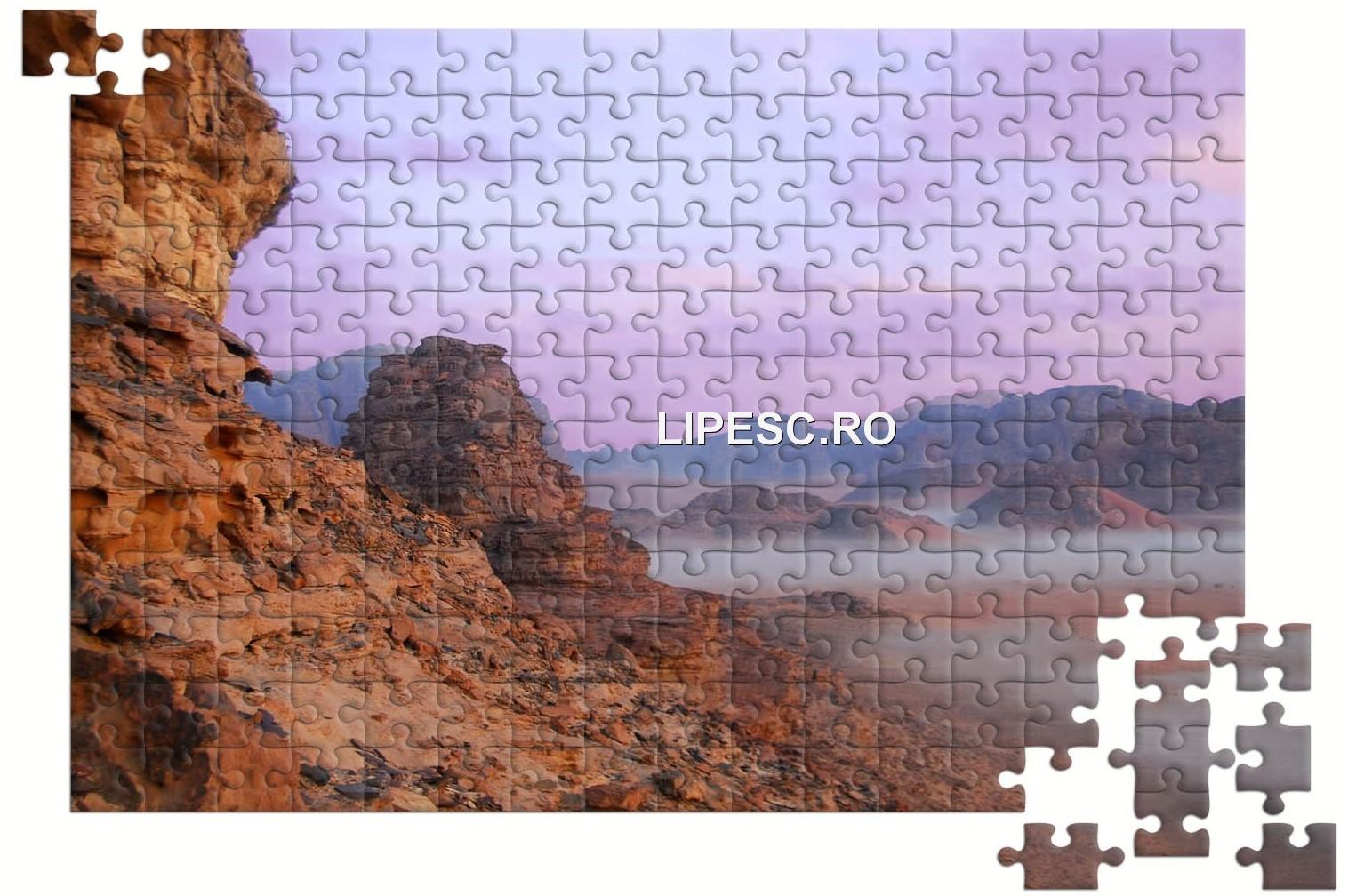 Puzzle Wadi