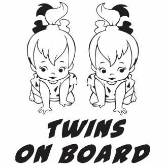 Sticker auto Twins on board